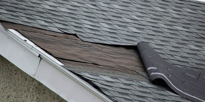 roof repair or roof replacement